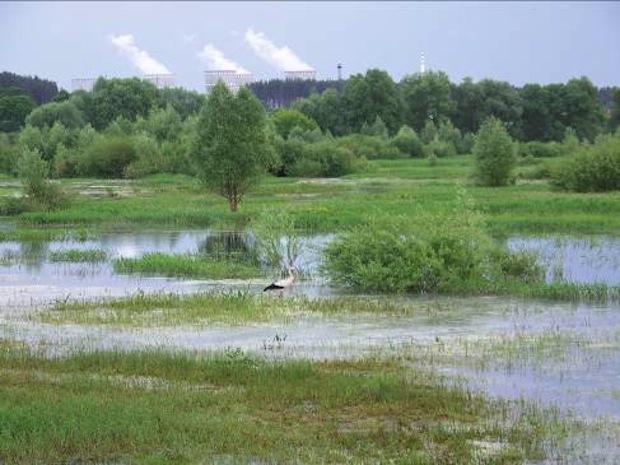 Bild: Interventionslandschaft Polesien: Überschwemmungsgebiet des Flusses Styr beim Kernkraftwerk Rivne, Kuznecovsk (Ukraine). Foto: Roman Kondrak.