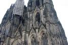 Universität zu Köln sucht Gastfamilien