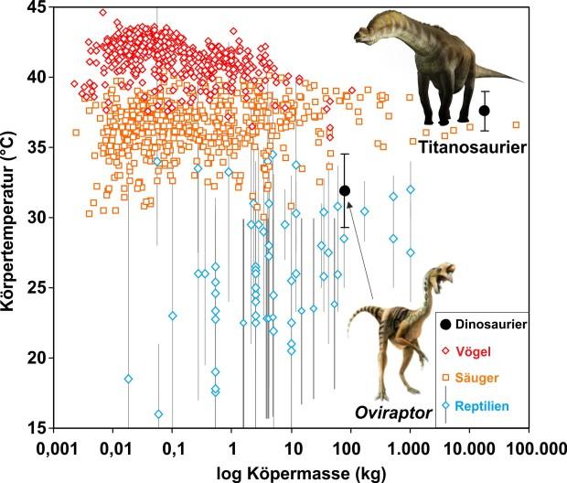 Photo of Körpertemperatur von Dinosauriern mit neuem chemischen Thermometer an Eischalen gemessen