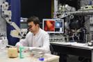 Biomedizinische Probleme mit optischen Werkzeugen lösen