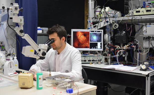 Photo of Biomedizinische Probleme mit optischen Werkzeugen lösen